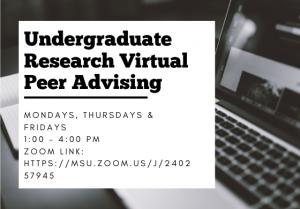 Undergraduate Research Virtual Peer Advising