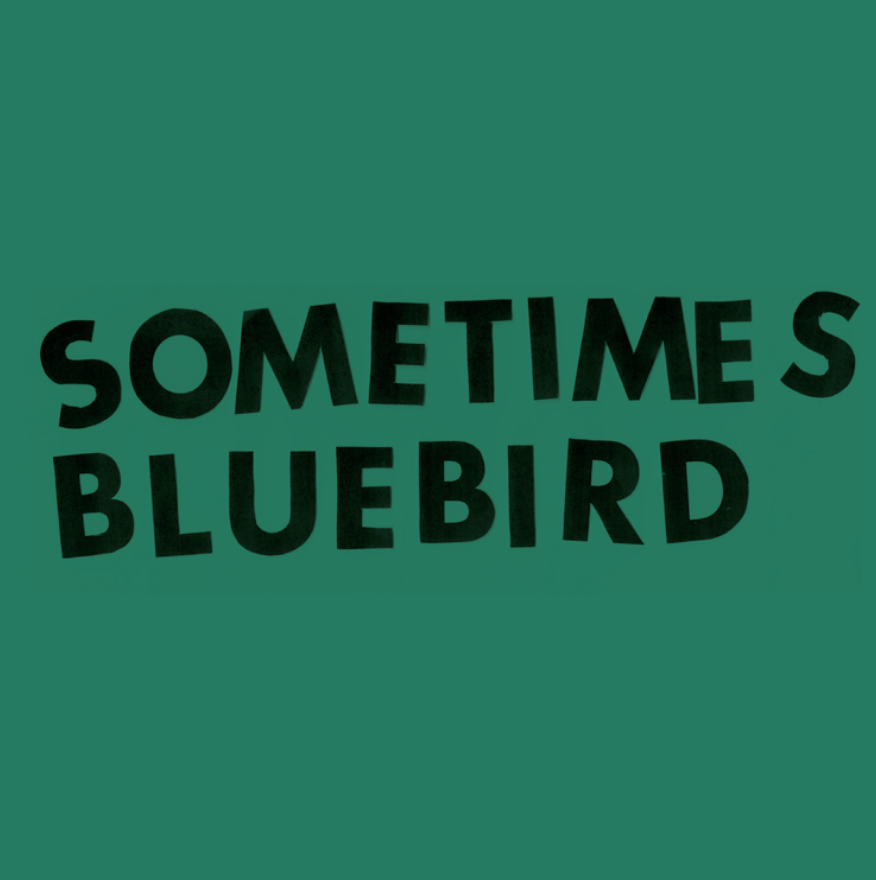 SOMETIMES BLUEBIRD- Group Exhibition @ (SCENE) Metrospace | East Lansing | Michigan | United States