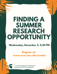 Finding a Summer Research Opportunity