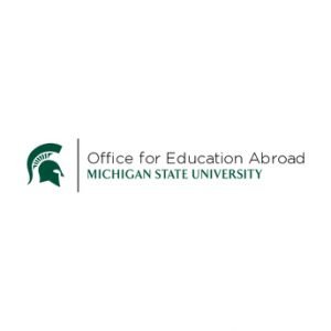 Education Abroad 101 Webinar
